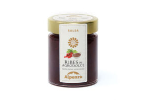 SALSA DI RIBES IN AGRODOLCE